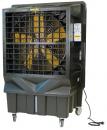 Охладитель воздуха Master BC 220 в Омске